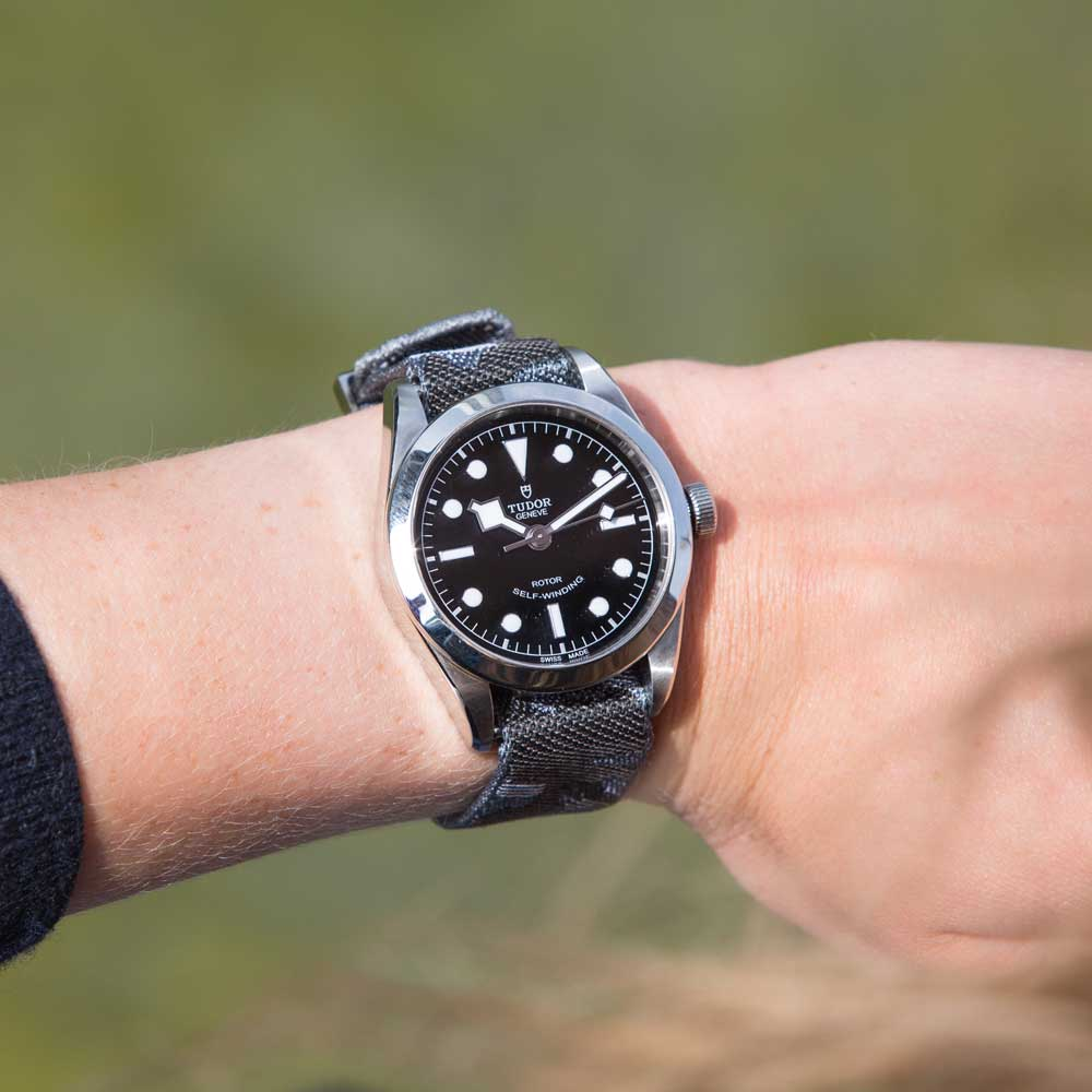 tudor pelagos blue vs black