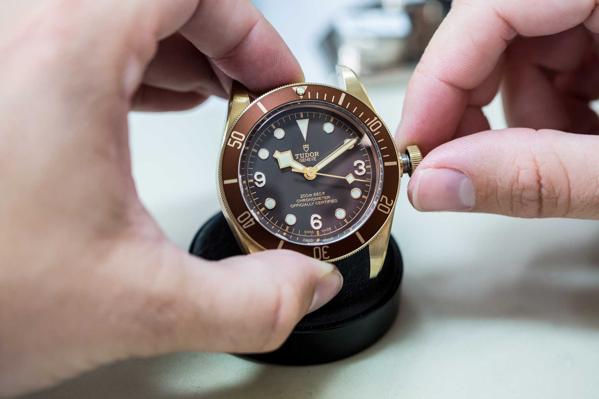 tudor pelagos black bay bronze