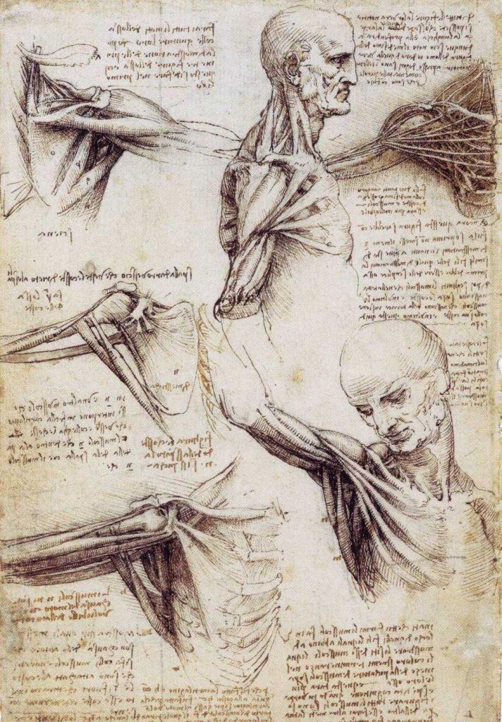 Leonardo da Vinci's sketches