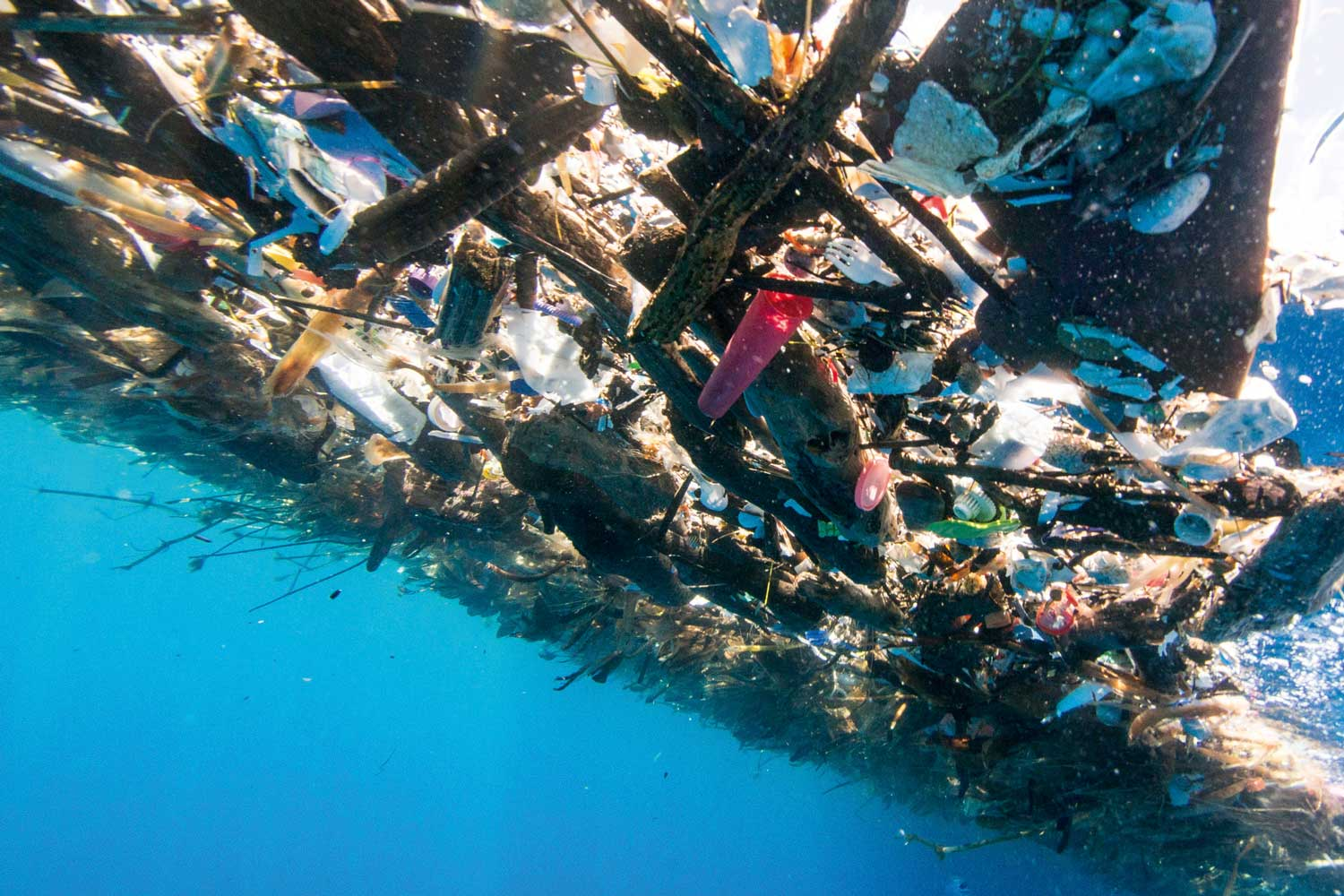 Trash on the ocean surface (Image: Caroline Power)