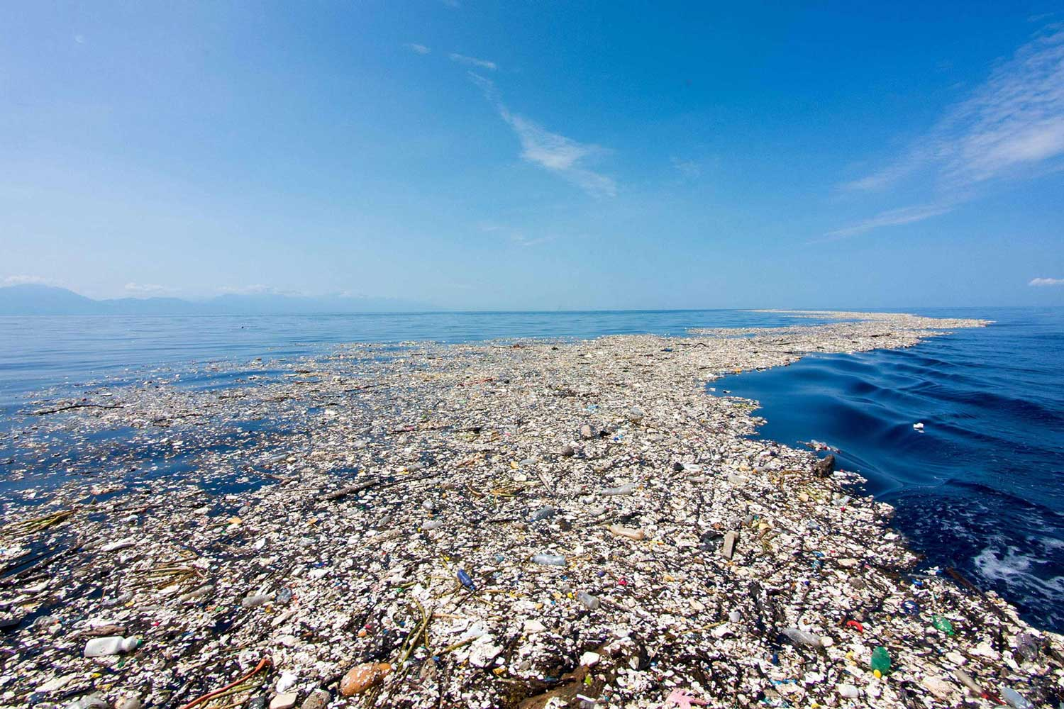The Great Pacific Garbage Patch is larger than the state of Texas, and it's just one of five garbage patches in the oceans