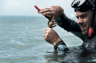 Revolution shines a spotlight on ocean conservation on World Oceans Day with Oris. Here, a diver with Reef Restoration Foundation carefully cuts a part of coral to replant in a nursery,