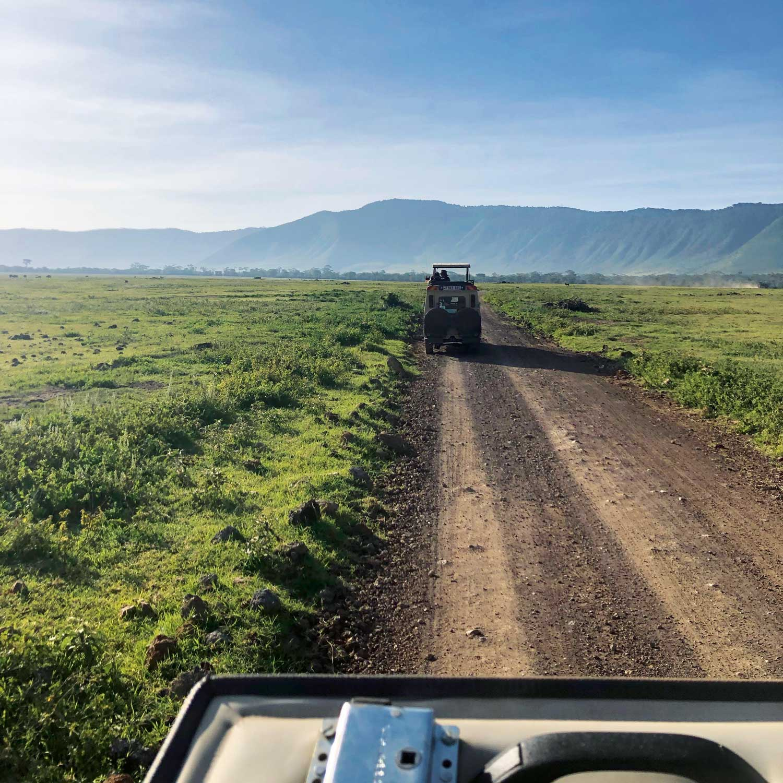Ralph Lauren Goes on Safari (Image: Skylar Furley)