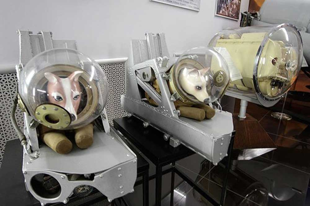 Dog suits used by the Soviet space agency (Photo: moonwatchuniverse.tumblr.com/archive)
