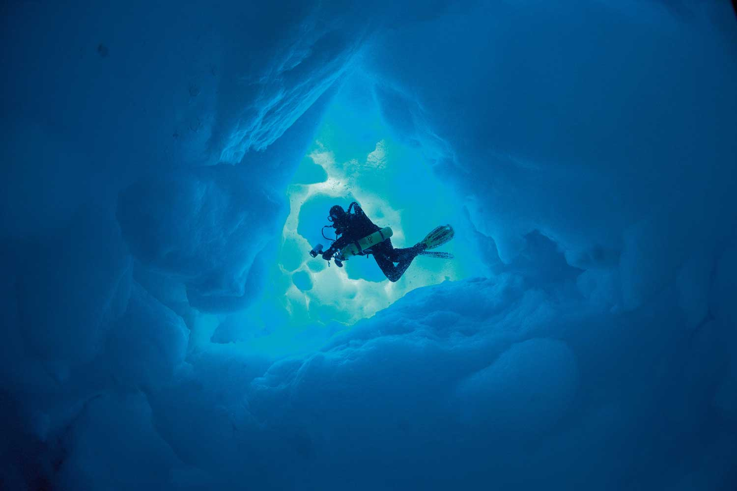 In 2010, Deep Sea Under The Pole by Rolex reported on the world beneath the arctic ice caps