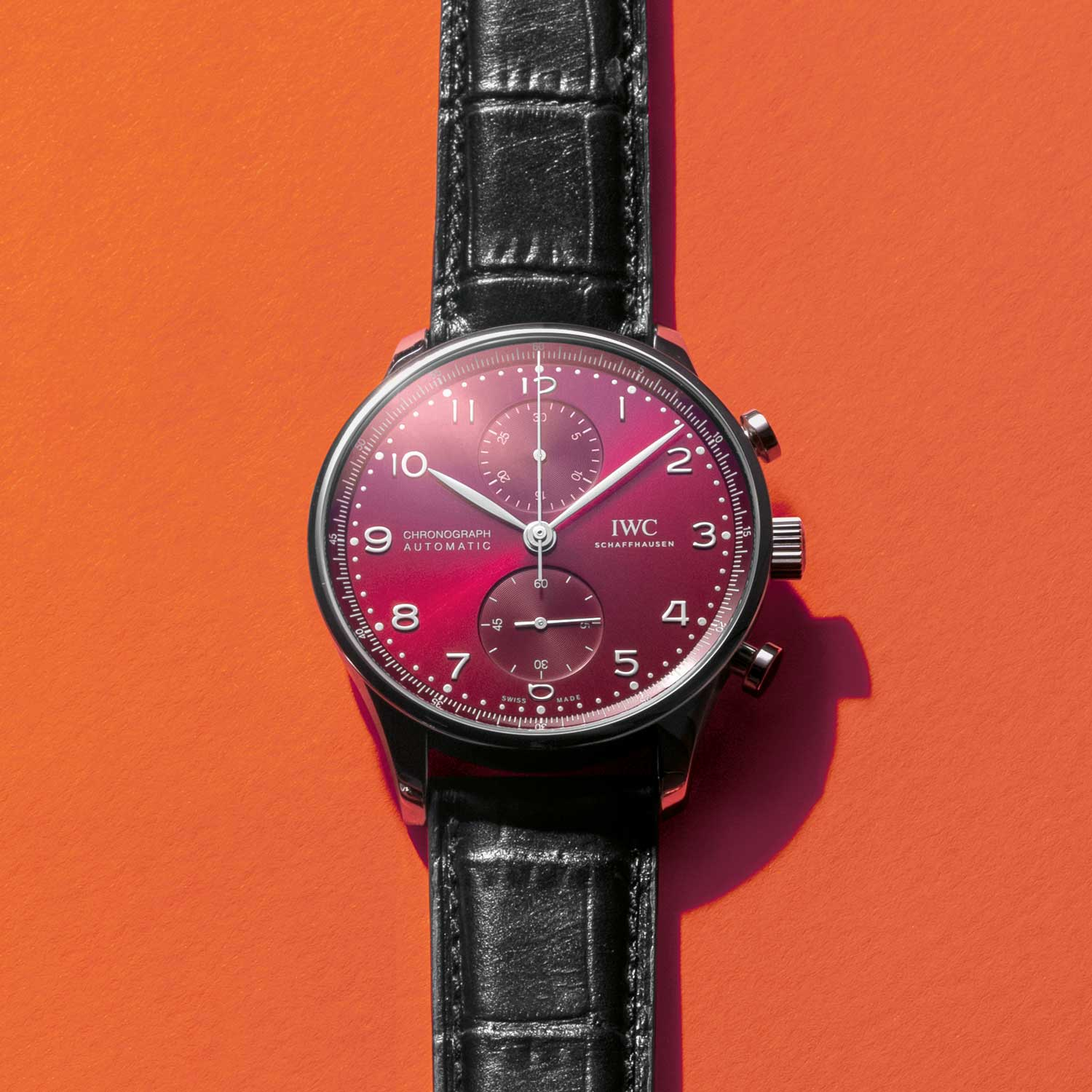 IWC Schaffhausen Portugieser Chronograph in stainless steel with a burgundy dial.