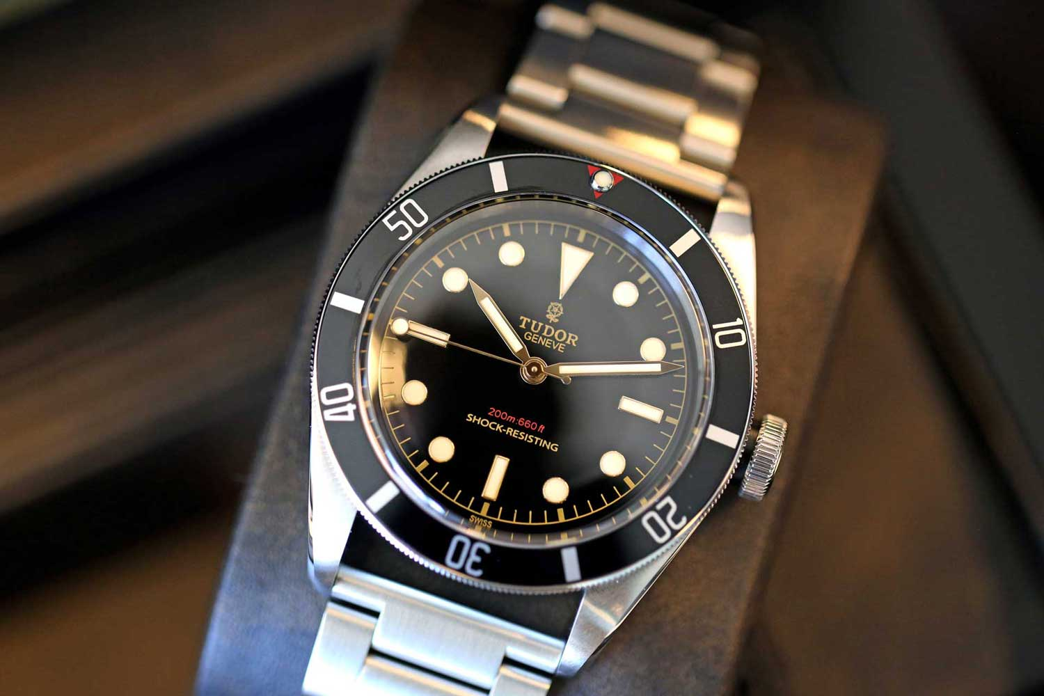 The Tudor Heritage Black Bay One, which sold for an unprecedented 375,000 Swiss Francs at Only Watch 2015